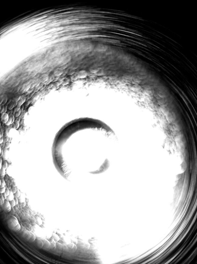 "Abstract . 首届""中国 · 宁夏抽象""展"